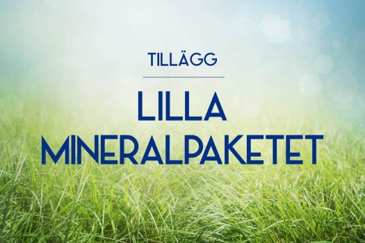 Tillägg Lilla Mineralpaketet